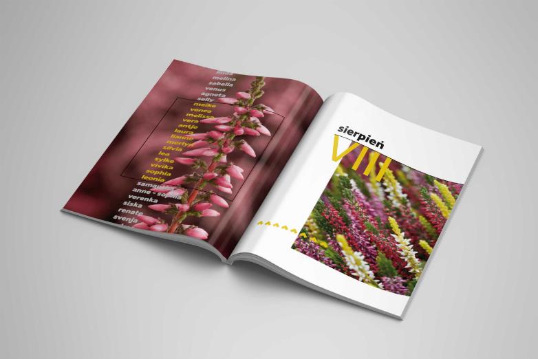 Magazine_Mockup_3