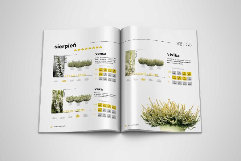 Magazine_Mockup_4